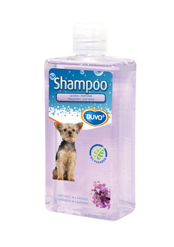 SHAMPOO LAVENDER FRAGRANT 250ml